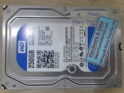 11976-Western-250GB