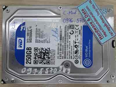 20-1-Western-250GB