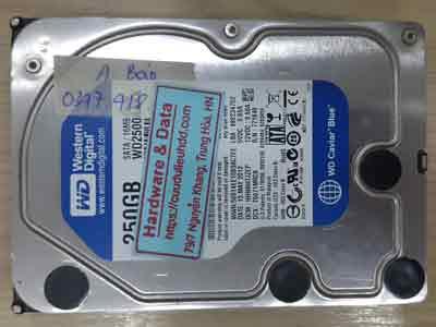 12183-Western-250GB