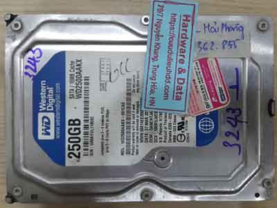 25-3-Western-250GB