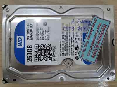 12519-Western-250GB