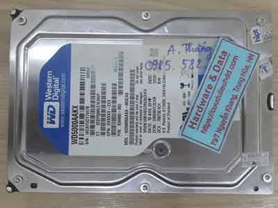 12564-Western-500GB